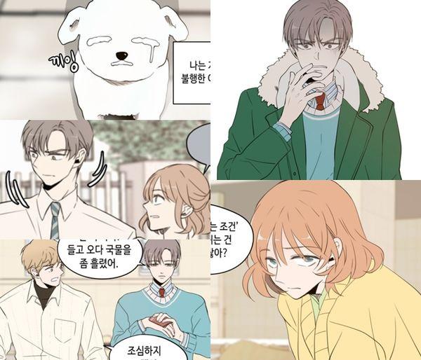 23 phim truyền hình Hàn Quốc chuyển thể từ webtoon sẽ lên sóng năm 2019 - Hình 19
