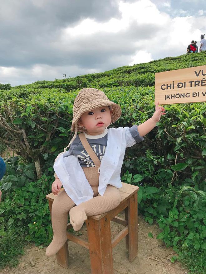 Check-in toàn những điểm hot ở Đà Lạt nhưng biểu cảm ngơ ngác của em bé này mới chính là điều khiến dân mạng thích thú - Hình 2