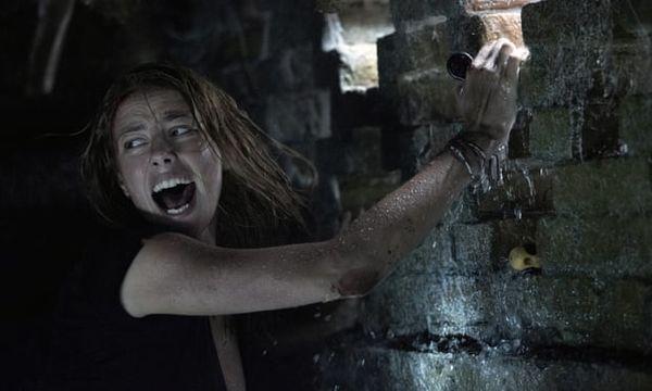 Review Crawl: Cuộc chiến sống còn với cá sấu, ăn đứt nhiều phim kinh dị - Hình 3
