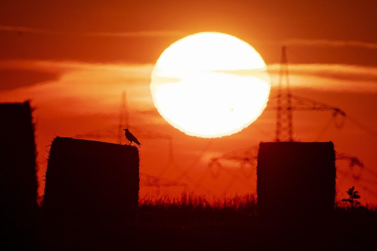 Chính thức: Thế giới trải qua tháng 7 nóng chưa từng thấy trong lịch sử - Hình 1