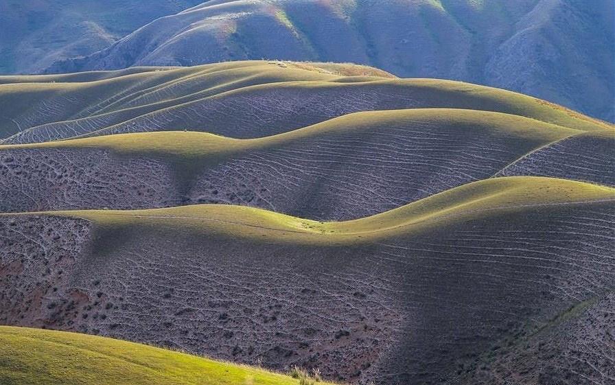 Mê mẩn với đồng cỏ đẹp như tranh tại Tân Cương - Hình 14