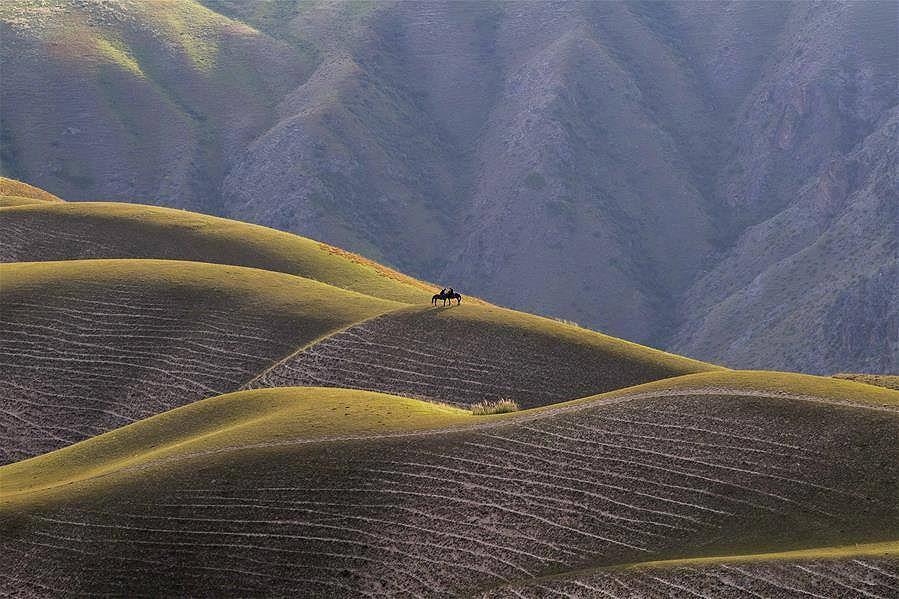 Mê mẩn với đồng cỏ đẹp như tranh tại Tân Cương - Hình 8