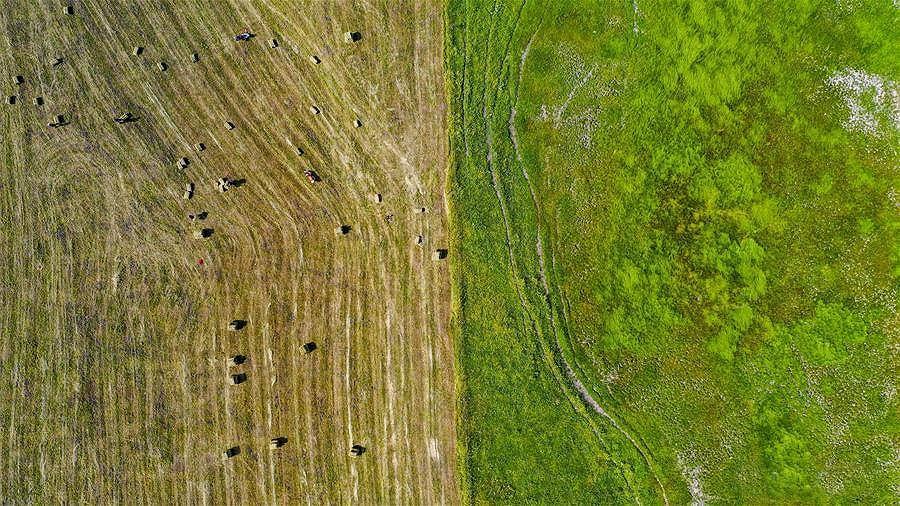 Mê mẩn với đồng cỏ đẹp như tranh tại Tân Cương - Hình 7