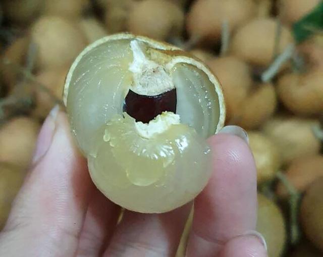 Nhãn bắp cải, hàng Việt cực hiếm, giá cực đắt có tiền khó mua - Hình 2