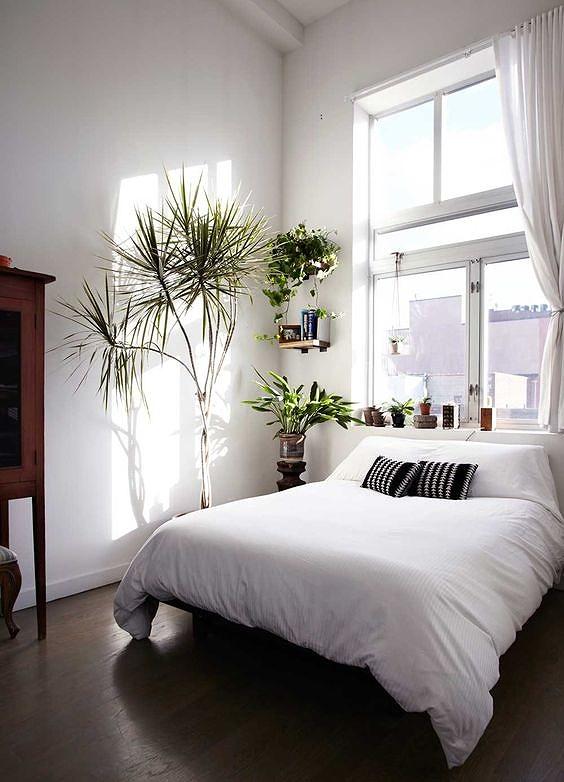Phòng ngủ nổi bật cho nhà phố hẹp nhờ biến tấu cổ điển và cây xanh - Hình 8