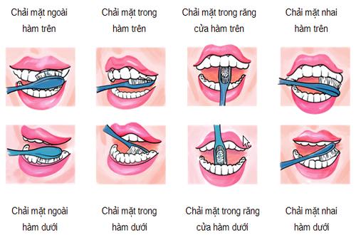 Lưu ý khi sử dụng bàn chải và kem đánh răng - Hình 1