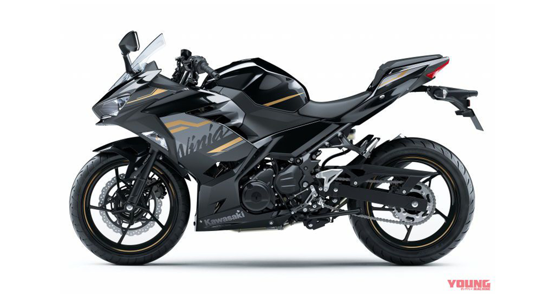 Kawasaki Ninja 250 2020 bắt mắt hơn với màu và tem mới - Hình 6