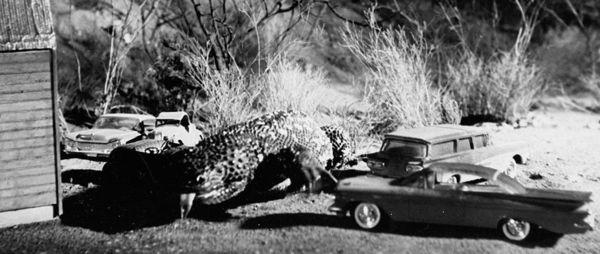 Lỡ yêu Crawl - Địa đạo cá sấu tử thần, xem thêm 10 tựa phim quái vật bò sát hấp dẫn sau đây! - Hình 7