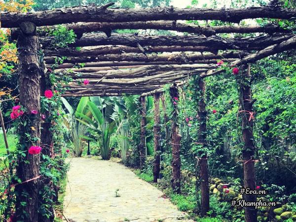 Nhà vườn thơ mộng 3000m² như resort của nữ biên tập viên VTV xinh đẹp - Hình 5