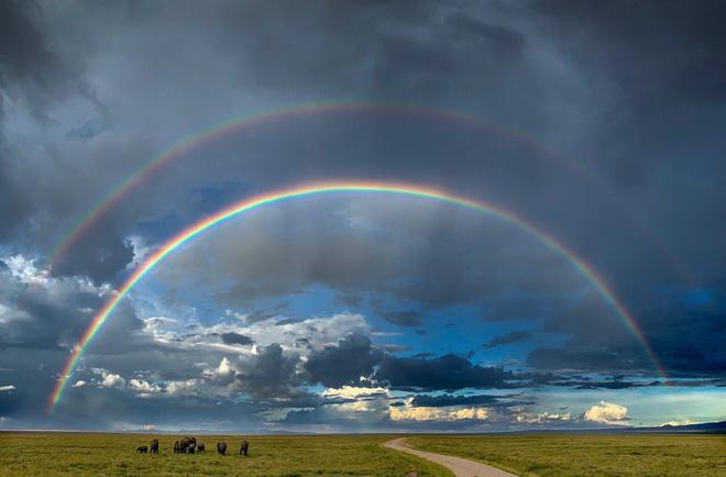 Tim Cook chào đón Ngày Nhiếp ảnh Thế giới với loạt ảnh tuyệt đẹp chụp bằng iPhone - Hình 4