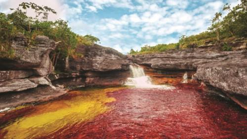 Độc đáo dòng sông 5 màu ở Colombia - Hình 3