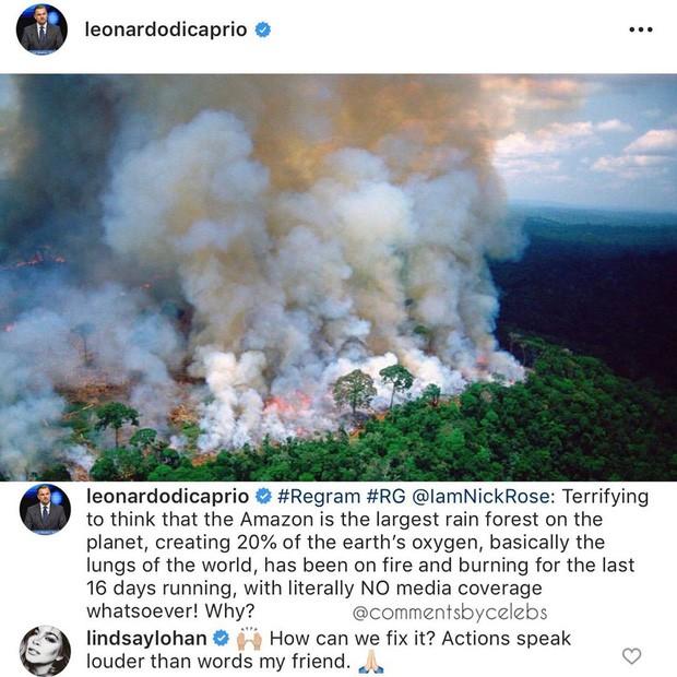 Hàng loạt sao nổi tiếng thế giới lên tiếng về vụ cháy rừng Amazon: Justin Bieber, Ronaldo đều đã hành động! - Hình 4