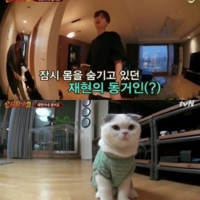 Khối tài sản của Goo Hye Sun - Ahn Jae Hyun: Chồng liệu có kém xa vợ, khó khăn không mà phải tranh chấp gay gắt? - Hình 15