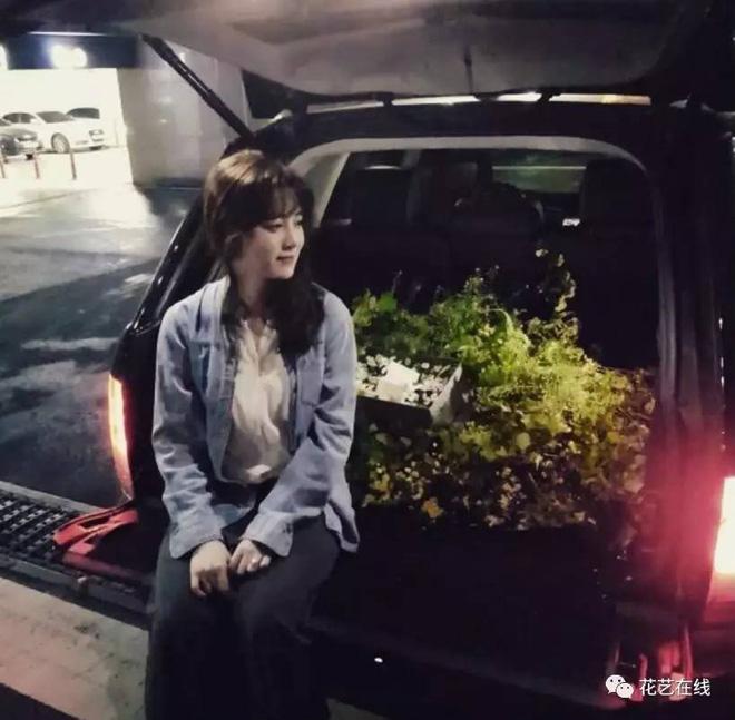 Khối tài sản của Goo Hye Sun - Ahn Jae Hyun: Chồng liệu có kém xa vợ, khó khăn không mà phải tranh chấp gay gắt? - Hình 12