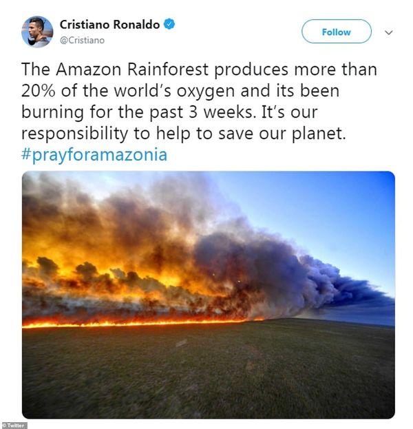 Sự thật đằng sau loạt ảnh cháy rừng Amazon được chia sẻ tràn lan trên MXH: Ảnh và những cái chết là thật nhưng không hề liên quan tới nhau - Hình 1