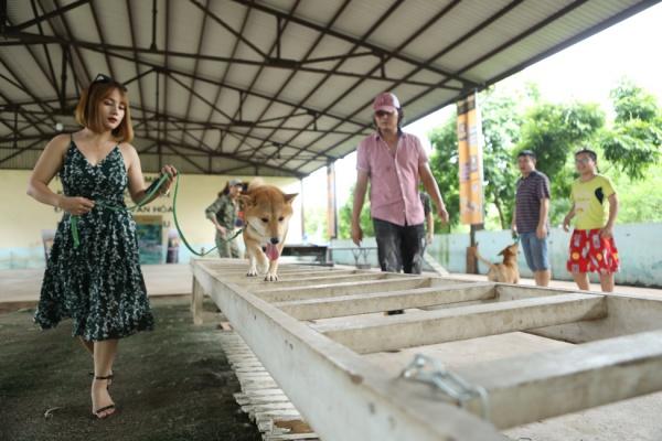 Phim điện ảnh Việt đầu tiên có diễn viên chính là nhân vật bốn chân lộ diện! - Hình 3