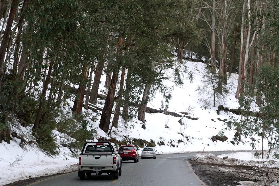 Thu này bạn thử dẫn con đến Úc trượt tuyết: Cực kỳ thú vị - Hình 2