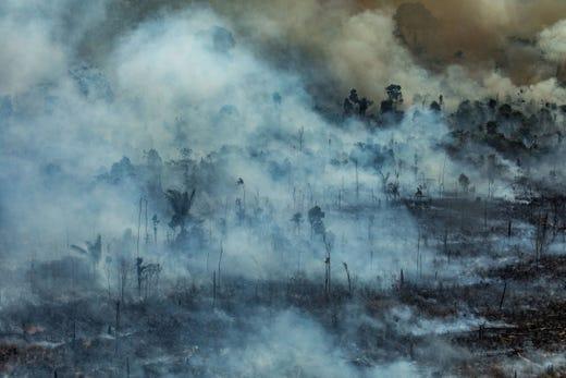 Cháy rừng Amazon: Quả bom carbon ngày tận thế giáng xuống Trái đất - Hình 13