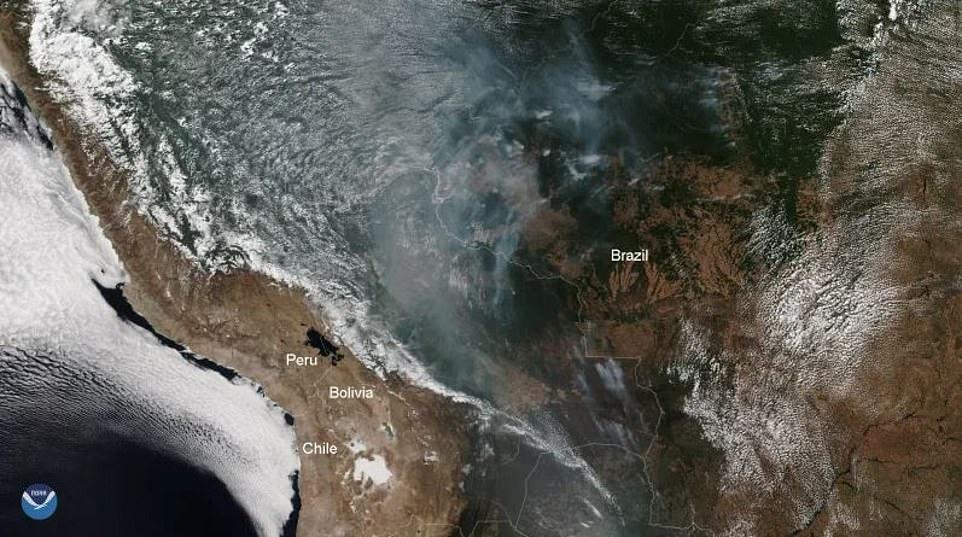 Cháy rừng Amazon: Quả bom carbon ngày tận thế giáng xuống Trái đất - Hình 5