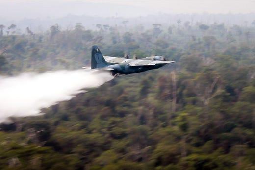 Cháy rừng Amazon: Quả bom carbon ngày tận thế giáng xuống Trái đất - Hình 18