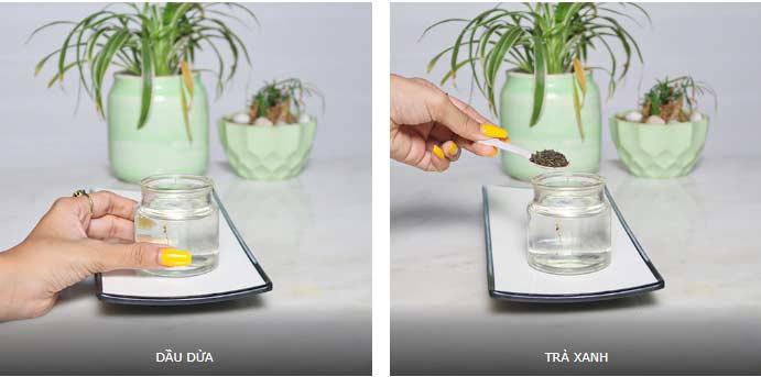 Đừng tốn vài trăm nghìn mua dầu dưỡng da, tự làm tại nhà từ dầu dừa và trà mạn - Hình 2