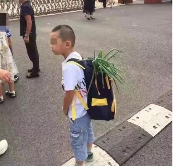 Bắt gặp học sinh bỏ củ hành lá vào cặp trong ngày đầu tiên đến trường, cư dân mạng thích thú trước ý nghĩa của phong tục hiếm có khó tìm này - Hình 2