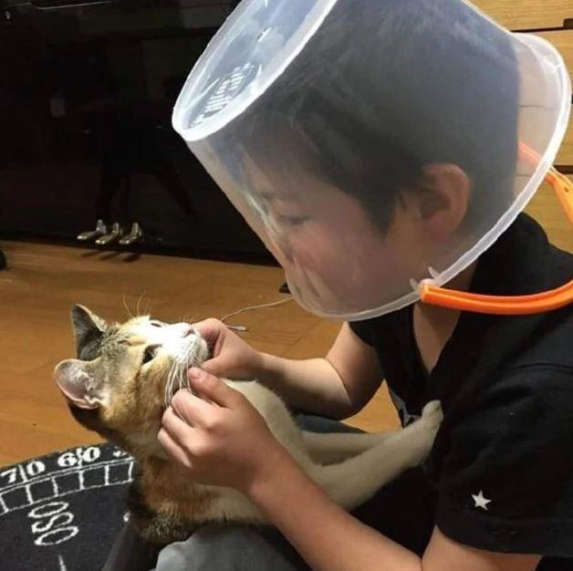 Đang chơi vui mà bị mèo cào sưng cả mặt, chú bé ló cái khôn khiến dân mạng cười muốn té ghế - Hình 4