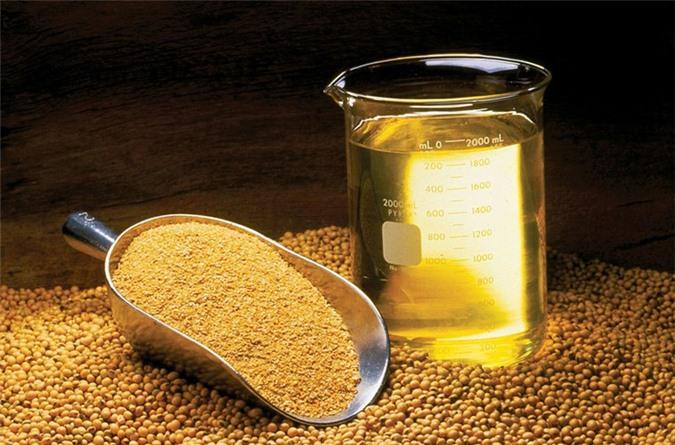 Lợi ích vàng của dầu cám gạo - Hình 7