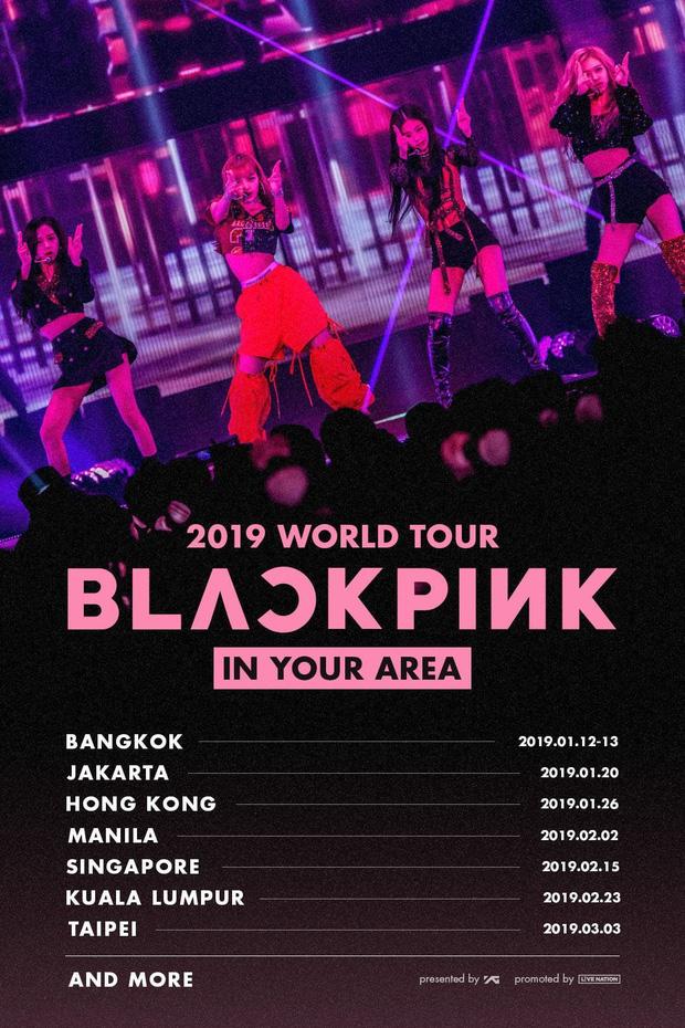 Đọ doanh thu concert của 3 nhóm Kpop ở các nước: BLACKPINK bất ngờ thua 1 boygroup bị chê flop ở Mỹ - Hình 2