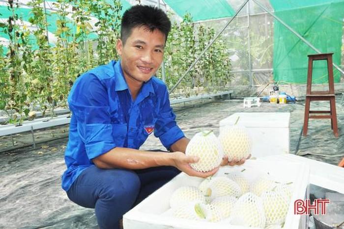 Mô hình nhà màng công nghệ cao ở Hà Tĩnh cho thu nhập hàng trăm triệu đồng - Hình 1