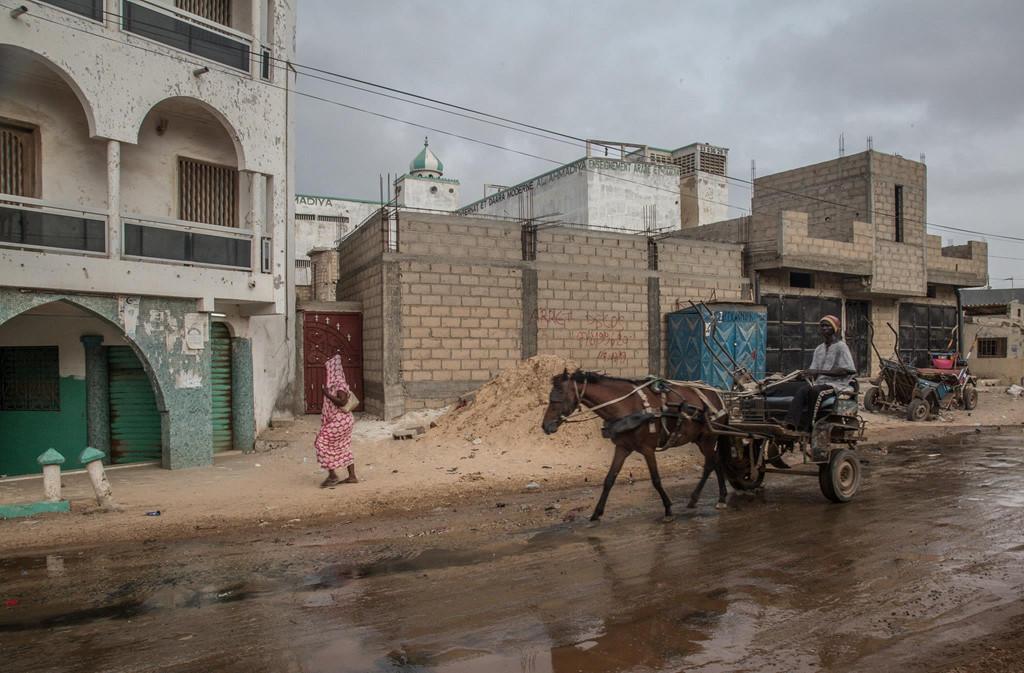 Motor hiện đại đối đầu xe ngựa kéo một thời vang bóng ở Senegal - Hình 3