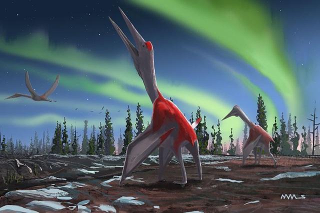 Phát hiện hoá thạch loài động vật biết bay lớn nhất từng sống trên Trái Đất - Hình 1