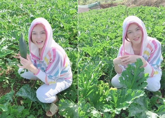 Sao Việt và cuộc sống trồng rau nuôi gà ở những nông trại tiền tỷ - Hình 2