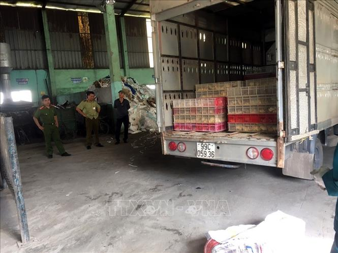Bắt giữ, tiêu hủy hơn 4.000 con gà nhập lậu - Hình 1