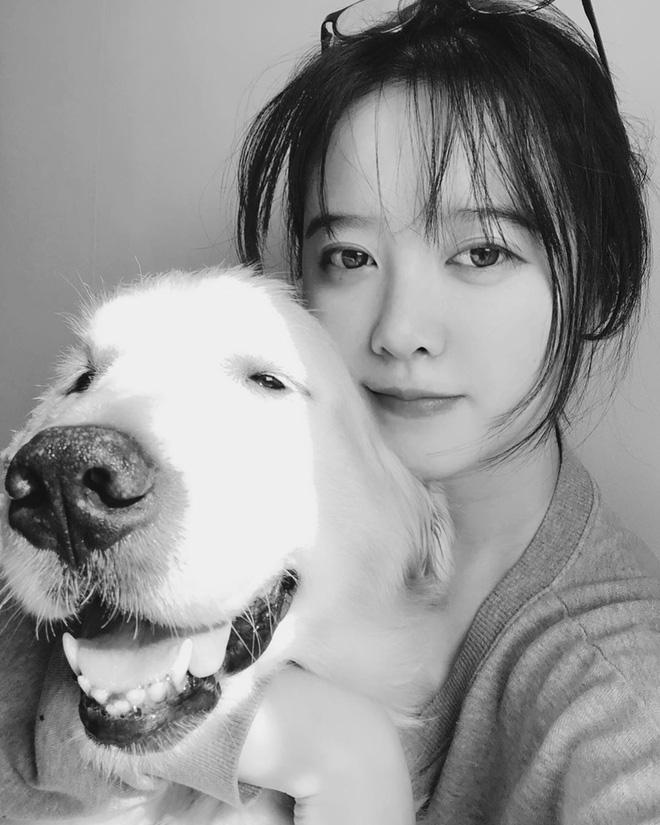 Giằng co chán chê, Goo Hye Sun lại quyết không ly dị Ahn Jae Hyun nữa vì lý do tưởng vô lý nhưng lại rất quan trọng - Hình 3