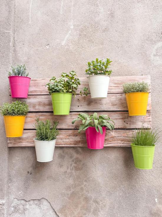 15 ý tưởng làm vườn treo trong nhà - Hình 15