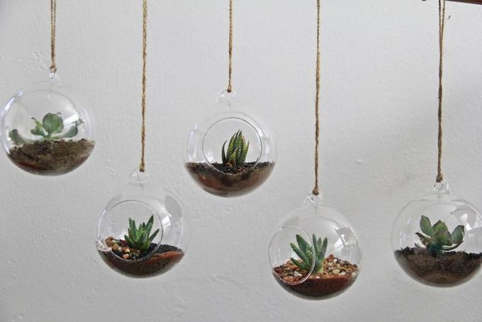15 ý tưởng làm vườn treo trong nhà - Hình 6