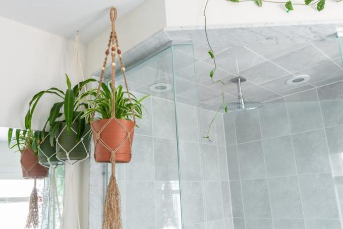 15 ý tưởng làm vườn treo trong nhà - Hình 9
