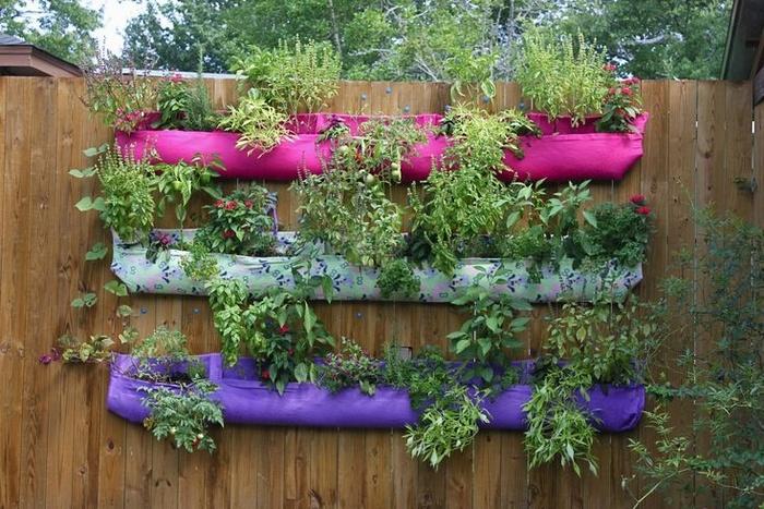 5 ý tưởng làm khu vườn thẳng đứng đẹp mộng mơ mà cực chất chơi ai cũng trầm trồ - Hình 2