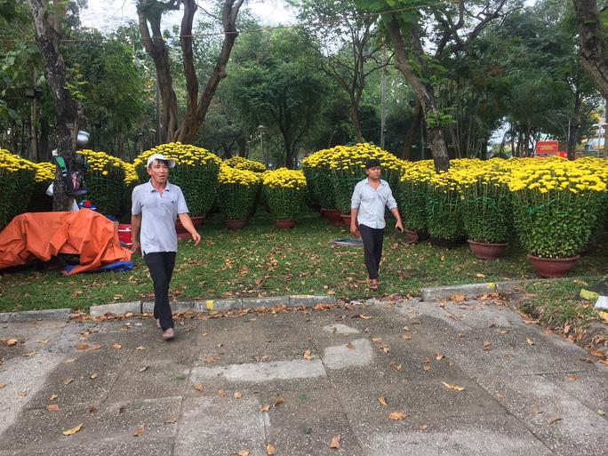 Đường phố TP HCM tràn ngập hoa Tết bán sớm - Hình 8