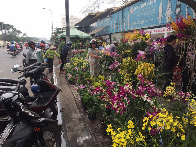 Đường phố TP HCM tràn ngập hoa Tết bán sớm - Hình 5