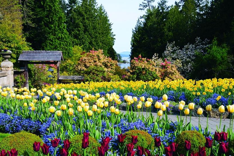 Vườn hoa thu hút hơn 1 triệu du khách mỗi năm của Canada - Hình 1