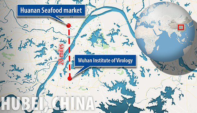 Virus Vũ Hán bị nghi là sản phẩm của phòng thí nghiệm, có liên quan đến chương trình chiến tranh sinh học của Trung Quốc - Hình 2