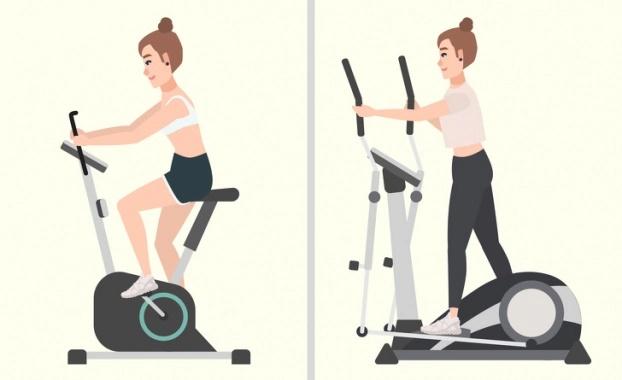 Cách xác định vị trí tích mỡ thừa của cơ thể và loại bỏ mỡ hiệu quả - Hình 4