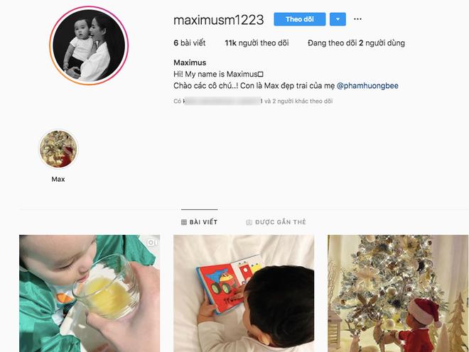 Phạm Hương chuẩn mẹ bỉm sữa Vbiz: Chăm con cực khéo, bé Max 1 năm tuổi đã có instagram 10 ngàn follower - Hình 1
