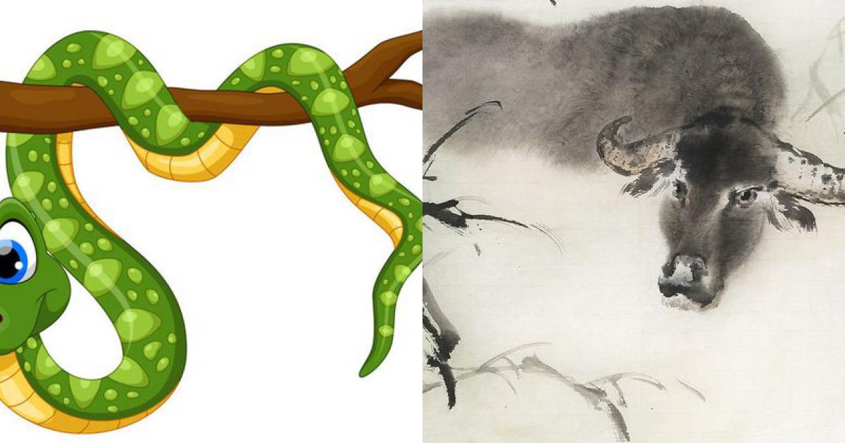 Tử vi 5 năm tới: 3 con giáp giàu có phát tài cuộc hưởng đủ vinh hoa phú quý