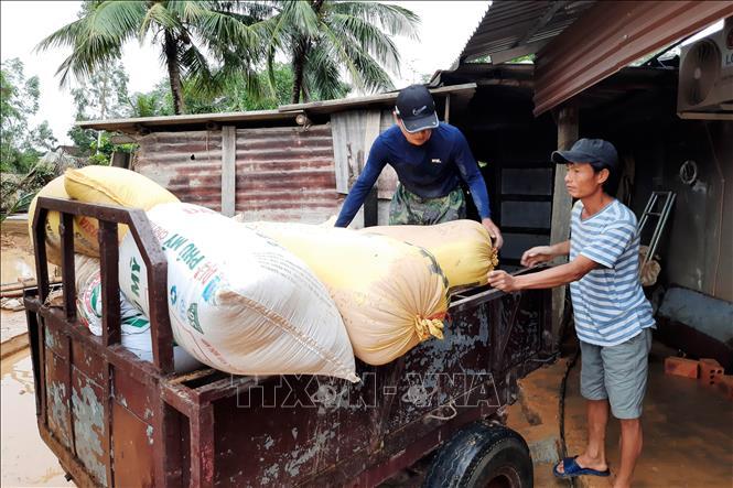 Rơi nước mắt cảnh người dân Hà Tĩnh mất trắng đàn bò, ôm heo gà sau lũ: Cả gia tài cho con ăn học - Hình 14