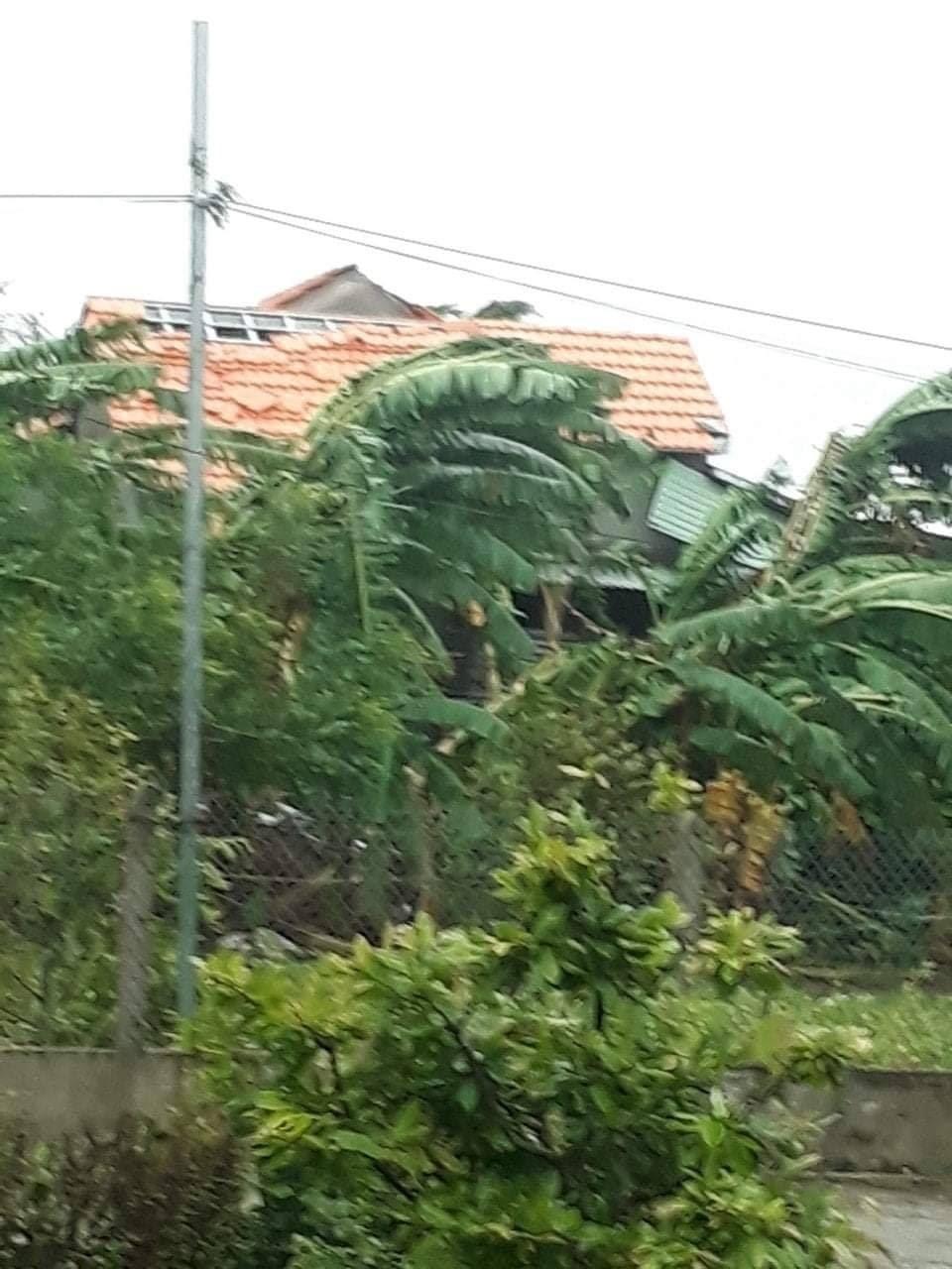 Quảng Ngãi ngay lúc này: Nhà dân đã tốc mái, đường xá tan hoang - Hình 8