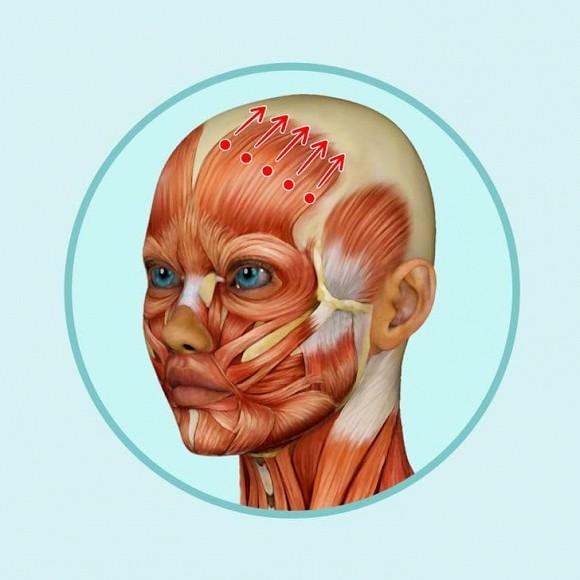 6 mẹo mát-xa đầu giúp giảm nếp nhăn, trẻ hóa khuôn mặt - Hình 5