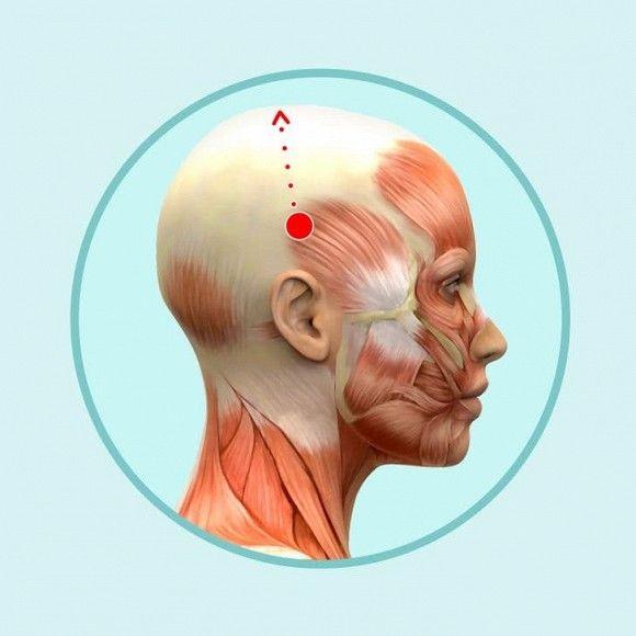 6 mẹo mát-xa đầu đơn giản giúp giảm nếp nhăn, da dẻ hồng hào căng mịn - Hình 6